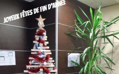 Sapion de Noël 3.jpg